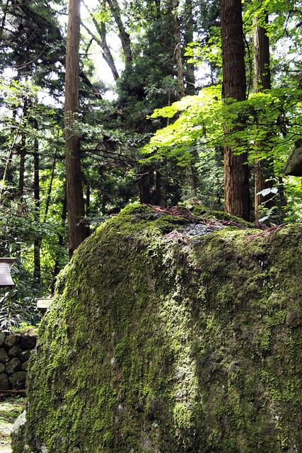 100627_104233_塩野神社