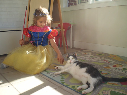 Princess Willow and her attack cat