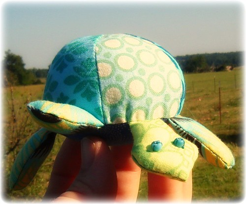 Tortoise 028