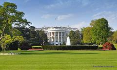 White House (Rafakoy) Tags: park usa house grass architecture digital yard us dc washington official nikon president unitedstatesofamerica whitehouse residence neoclassical neoclassic 105mm jameshoban nikond90 1600pennsylvaniaavenuenw afsnikkor18105mmvr aldorafaelaltamirano rafaelaltamirano aldoraltamirano