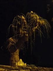 English Cemetery (Chriss Von Schwarzer) Tags: italy english cemetery night long exposure italia holy notte trieste inglese sacro cimitero notturno schwarzer
