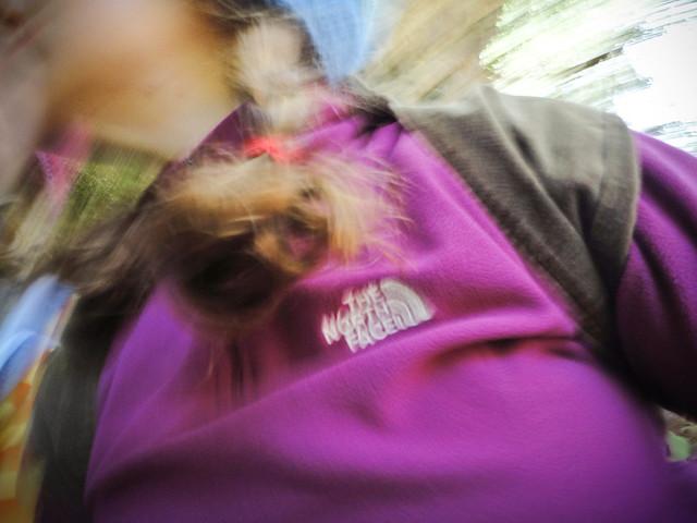 summer scrapbook :: humboldt redwoods camping trip...