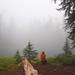 Deb in the fog