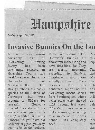 bunnies news