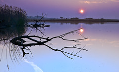 Amanecer en el lago (Bellesí) Tags: updatecollection ucreleased