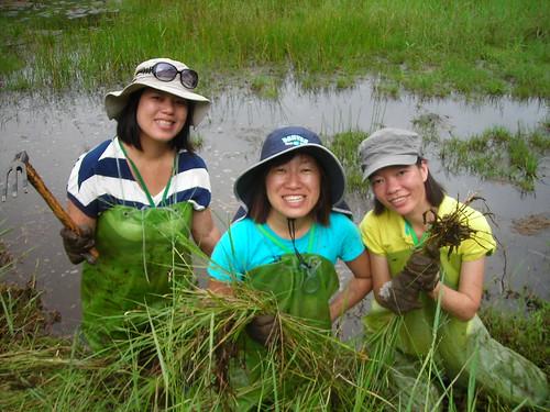 陽明山生態工作假期, 讓志工體驗溼地的魅力與國家公園的保育意義