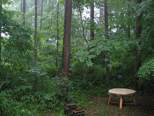 雷雨の山荘庭 08.7.28 by Poran111