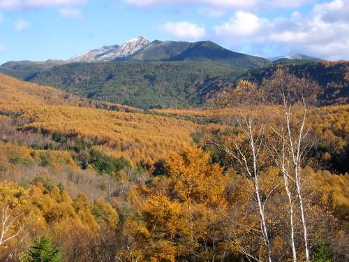 初冠雪した天狗岳など北八ヶ岳 2008.10.28 by Poran111