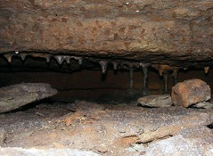 War Eagle Cavern (Caver_5150) Tags: life macro nature water creek outdoors scenery rocks stream photos awesome scenic springs limestone cave streams geology caving karst ozarks bluff creeks cccp ccp wareagle bmg caver wareaglecavern donaldlocander