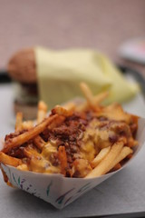 Javan's - chili cheese fries