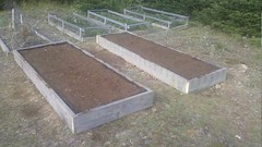 Beds 1 and 2