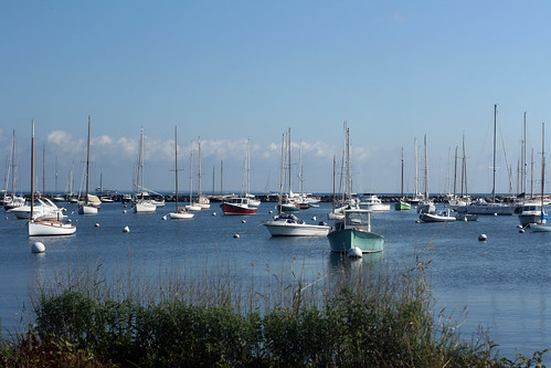Boats in Vineyard Haven