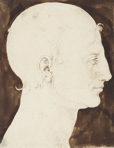 Constructed Head of a Man in Profile,  Albrecht Dürer, Pen and brown ink and dark brown wash