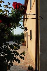 DSC_0067_3832_pt (Circolo Amici della Spigola) Tags: an montecarotto