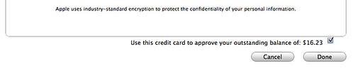 iTunes Credit Card Glitch 08