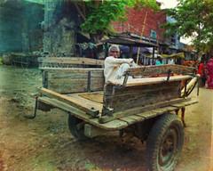 Man, cart, horse (Irene2005) Tags: street horse india man candid cart allahabad uttarpradesh 2460mm pointshootcamera leicadlux4 texturebylesbrumes