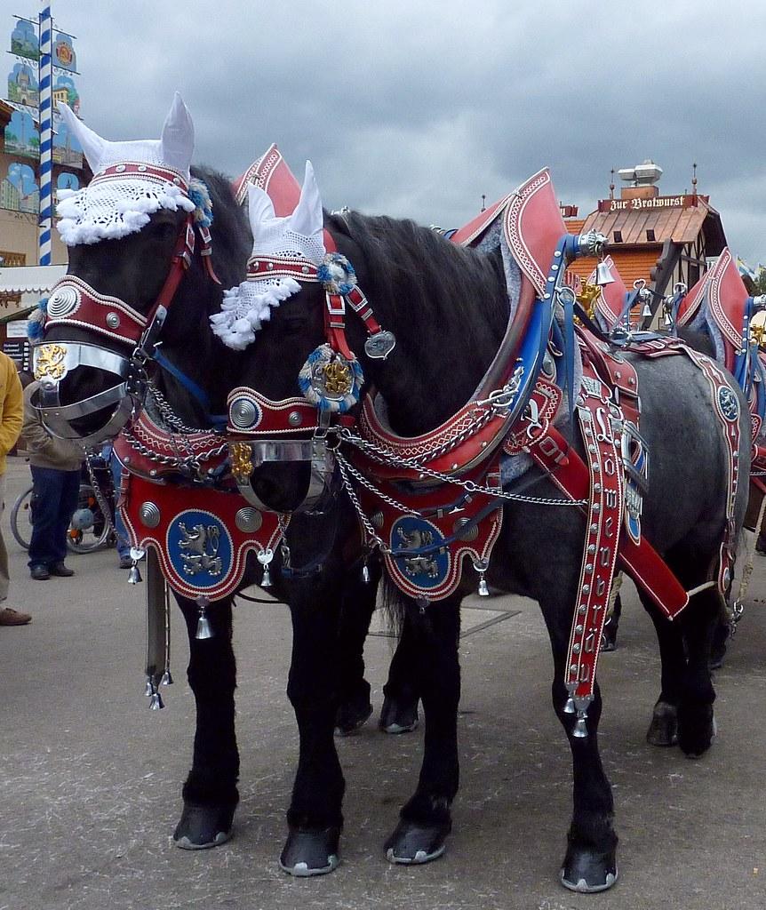 Horses on the Oktoberfest II