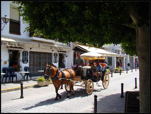 Coche de caballos en Mijas