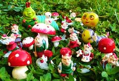 I'll do the leg work! (judibird) Tags: birthday christmas mushroom vintage toy gnome caterpillar elf gift mister whimsical elves vintagestyle mistermushroom