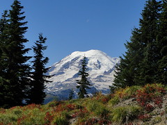 View of Rainier heading near rock viewspot on Shriner Peak trail.x