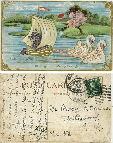 Best Wishes - Swans