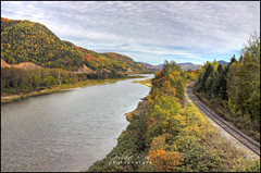 River Train (Guylaine Begin) Tags: autumn mountain canada fall nature forest montagne automne river landscape fallcolors border rail rivire explore newbrunswick qubec nouveaubrunswick 100 paysage hdr 1000 fort 175 couleursdautomne 128 gaspsie 1259 restigouche chemindefer restigoucheriver frontire matapdia voiefre valledelamatapdia hdrtonemapped rivirerestigouche matapediavalley