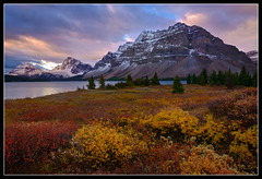 Bow Lake In Fall (Mike Hornblade) Tags: fall nature sunrise rockies banff za icefieldsparkway bowlake canadianrockies a850 variosonnart281635 bowmountain