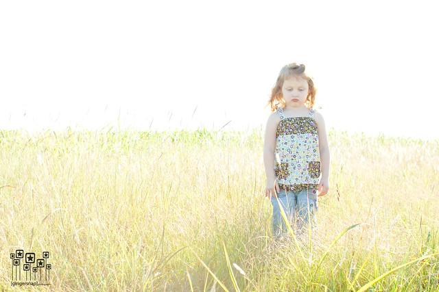 fall grass1