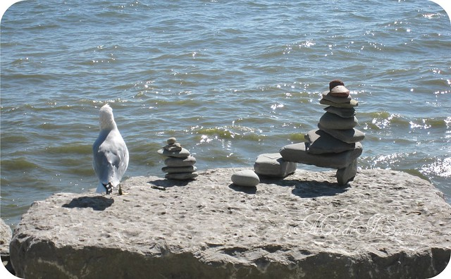 rock sculptures with seagull looking out imadeitso.com