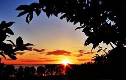 sunsetandsilhouette8