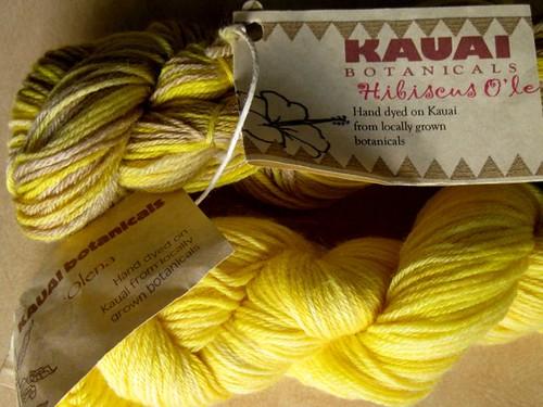 Kauai Botanicals hand-dyed yarns