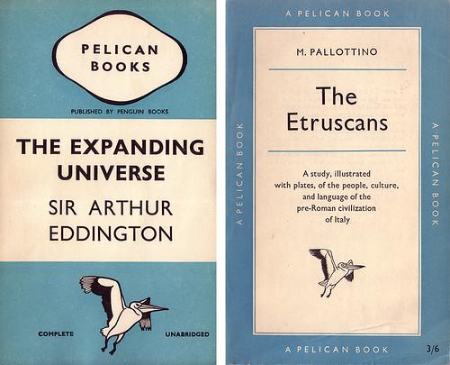 pelican-compare2_500