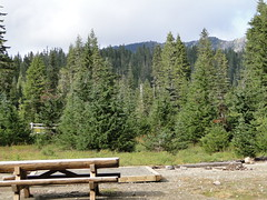 Back at Mowich Lake campground.