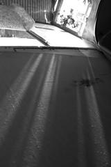 (Nastasia Mova) Tags: light shining
