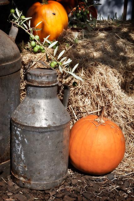 Fall Harvest Display