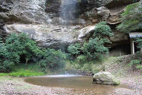 桜滝(滝つぼ)