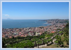 Naples : View from Certosa San Martino : Posillipo / Mergellina / Capri