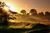 Bright start to the day (Chris Beesley) Tags: autumn sun mist sunrise early dunhammassey riverbollin pentaxk100dsuper 55300mm nicestarttotheday