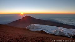 Kilimanjaro Summit (Will Burrard-Lucas   Wildlife) Tags: africa mountain kilimanjaro sunrise volcano peak glacier mawenzi kibo