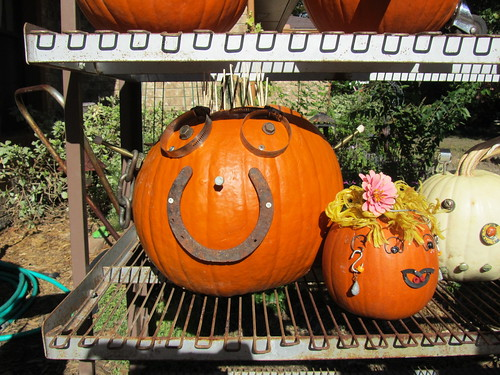 2010October16_Pumpkinfest 036