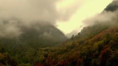 Atmosfere autunnali (BORGHY52) Tags: italy nature fog piemonte nebbia autunno alpi montain ottobre valpellice