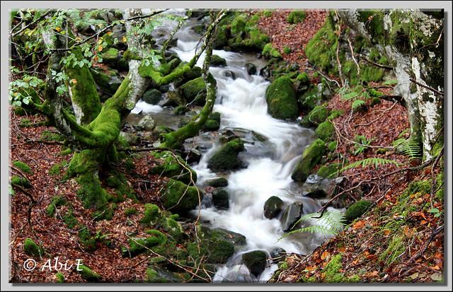 2 río Urbión