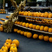 The most organized pumpkin patch ever