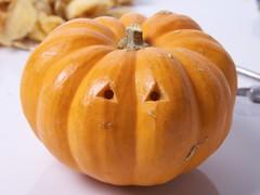TinyPumpkinArmy - 12