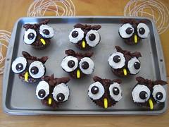 owl cupcakes :)