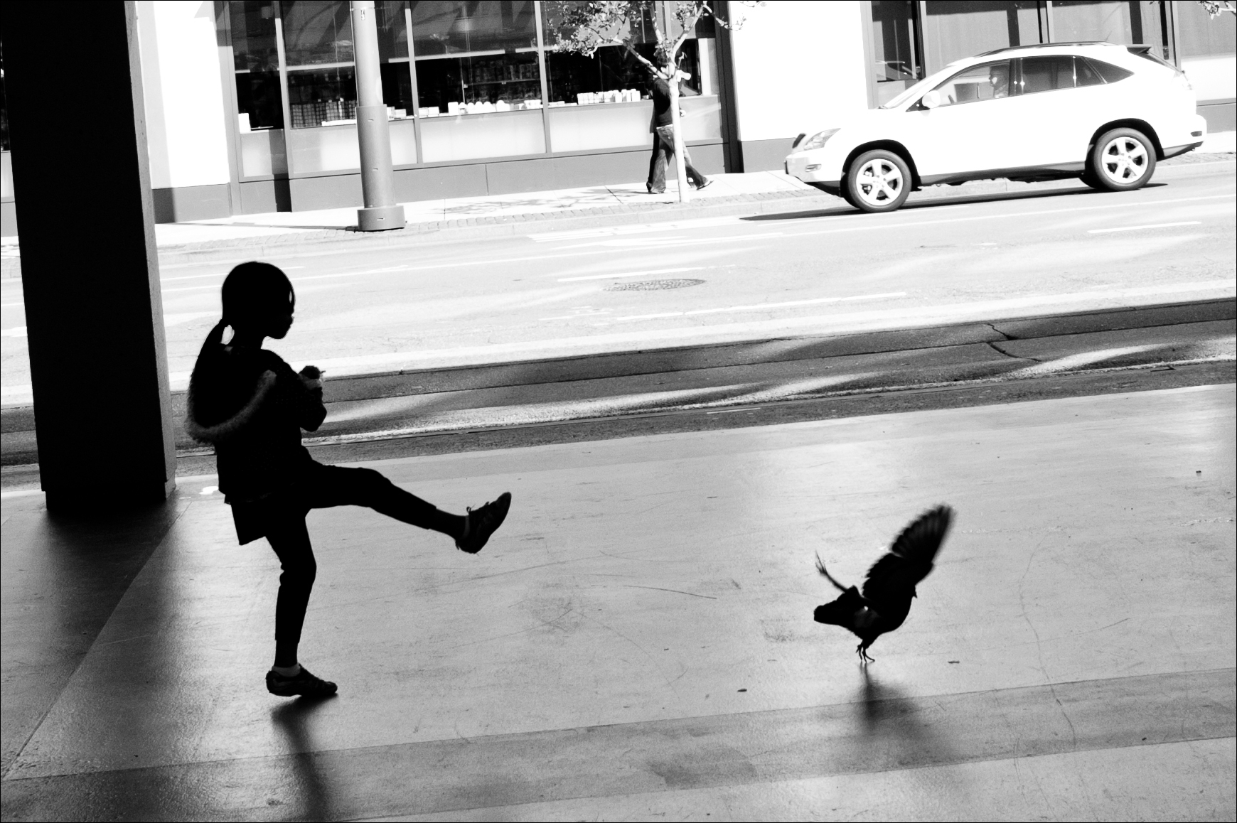 Girl vs. Bird