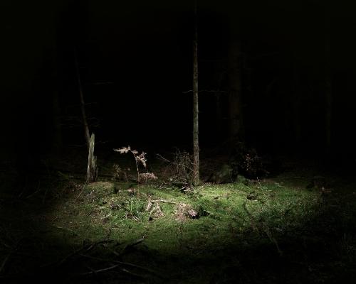 Stuart Bailes Untitled I (2007)