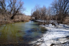 Ерик (equinox.net) Tags: вода снег река деревья речка грязь водоем пвд ерик