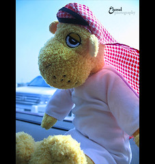 (3    d ) Tags: canon doha qatar  do7a   qatari  happyeid  3houd ohoud