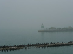 fog on Lake Michigan @ Chicago (doug.siefken) Tags: city trip urban usa chicago art water fog river illinois downtown gulls windy uptown horn breakwater streeterville siefken dougsiefken weatherf